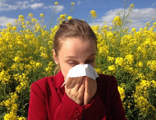 Allergy Remedies That Will Work This Spring