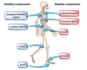 physical therapy in Smithtown and Selden